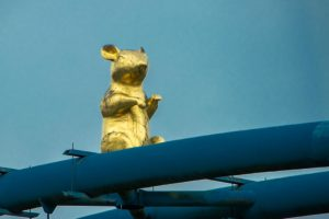 goldene Ratte in Hameln