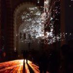 Fotospaziergang Evi Lichtungen 2020 9